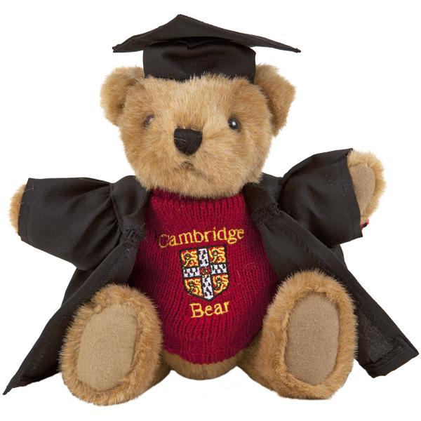 Teddy Bear - Graduation Gown
