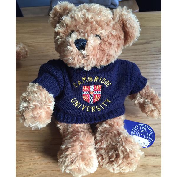 Teddy Bear - Navy Jumper